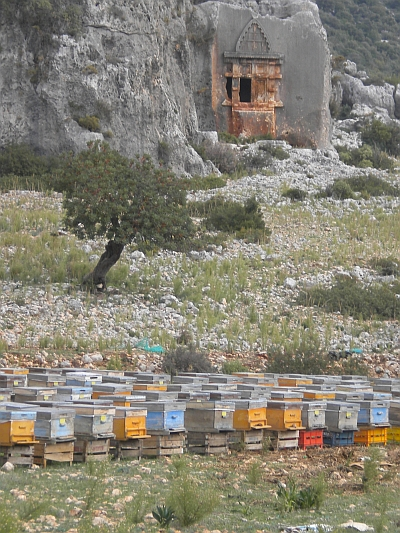 Lycian Coast Beehives